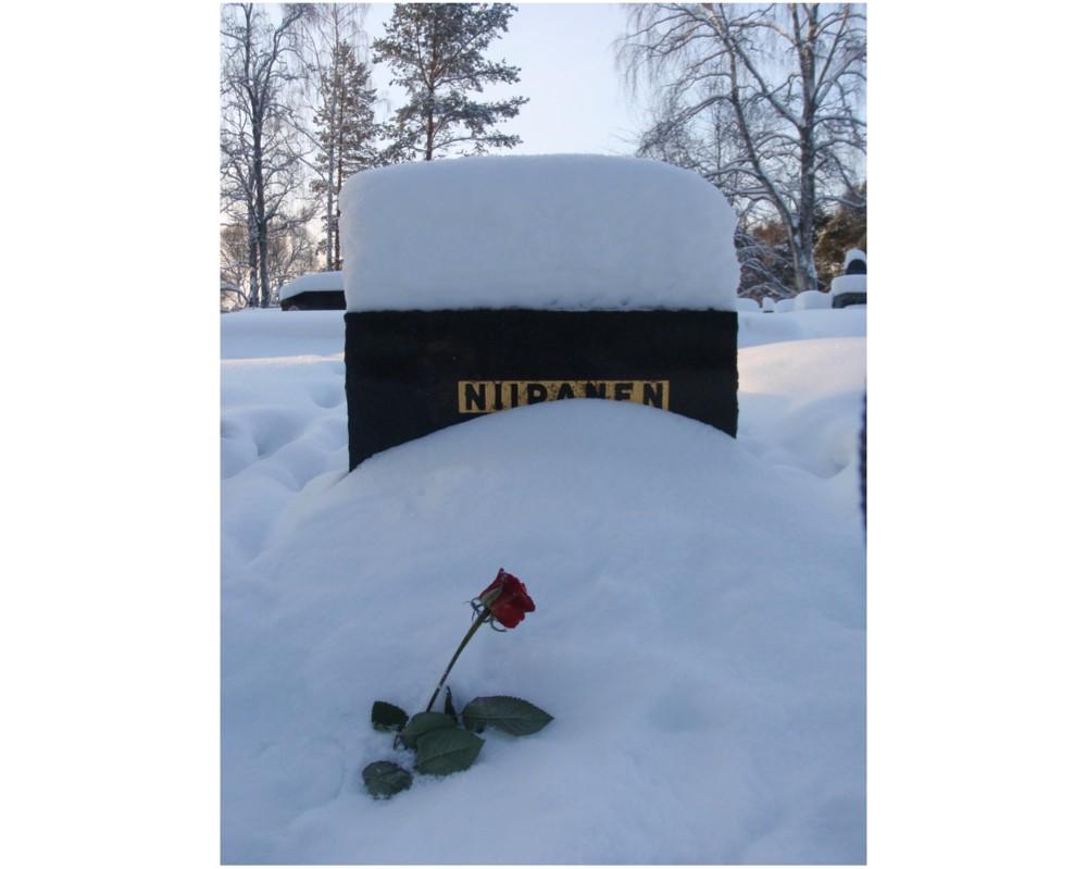 Random work from Mayumi Niiranen Hisatomi | Photo project  2012 | 28 January 2012