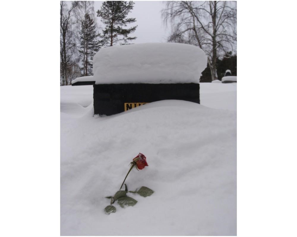 Random work from Mayumi Niiranen Hisatomi | Photo project  2012 | 18 February 2012