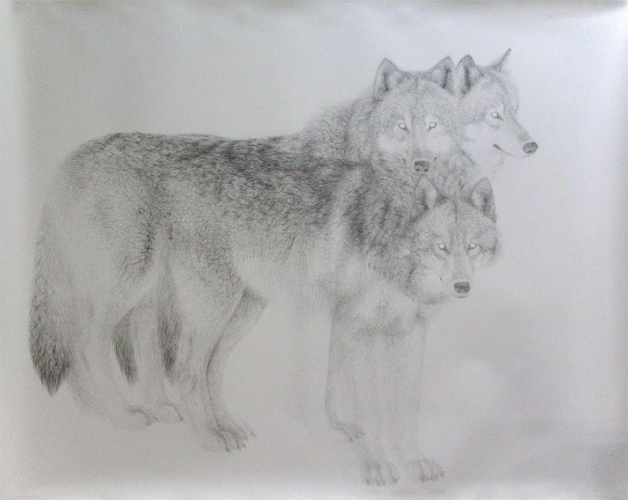 Random work from HENNI KITTI