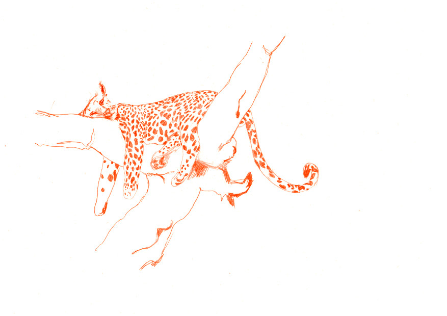 Random work from Sjuuls Oonk | WORK | Digital