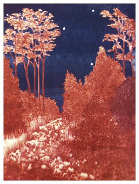 Random work from DEARHUNTER  | PRINTS EXTRAORDINAIRE | Print Autumn Forest Dress