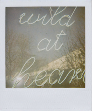 Random work from femke van heugten | _ p . s .  | wild at heart