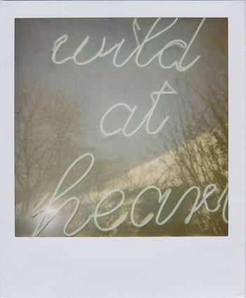 Random work from femke van heugten | _ p . s .  | wild at heart
